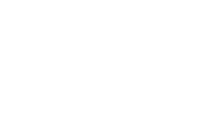 Firtree Farm Riding School logo