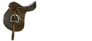 Saddles Riding Centre logo