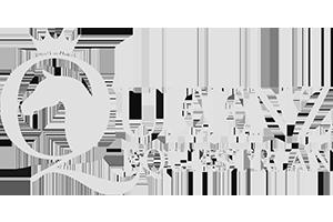 Queenz Equestrian logo