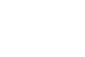 Dinefwr Riding Centre logo